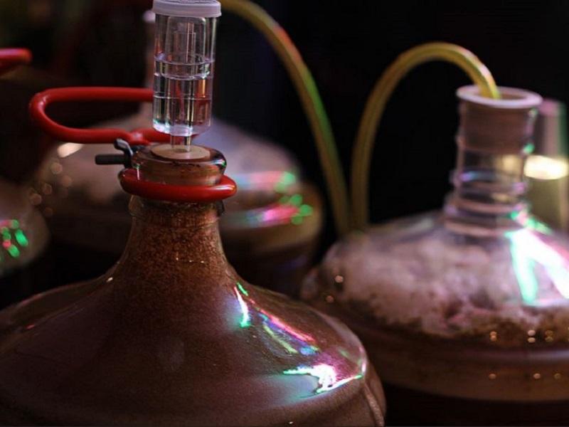 fermentação homebrew