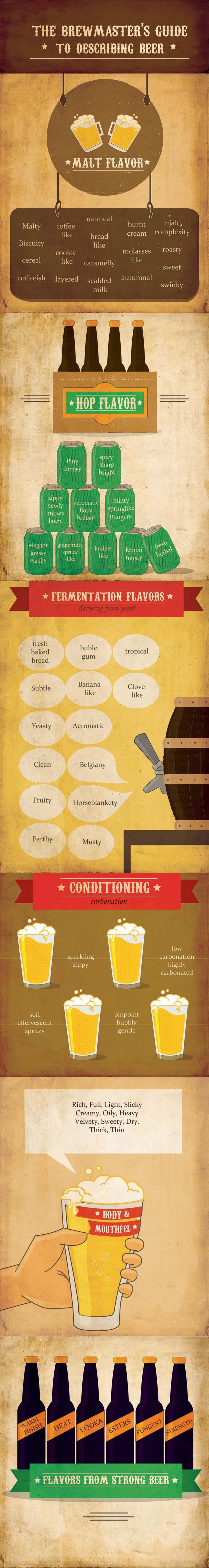 infográfico sabores da cerveja